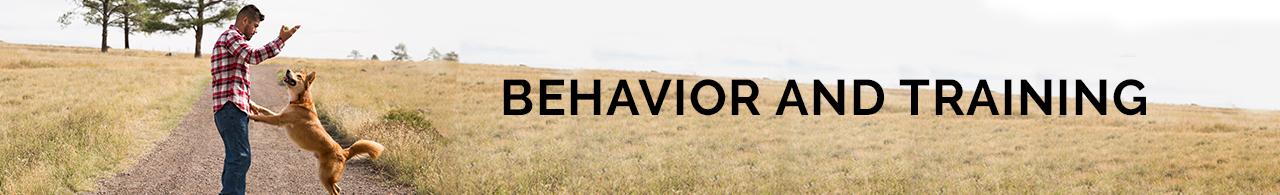 Behaviour & Training