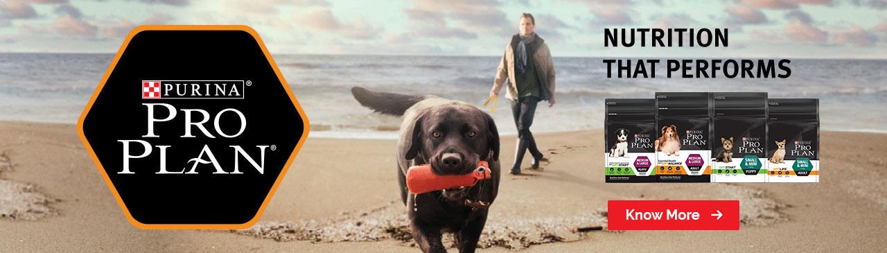Purina Pro Plan - Best Dog Food