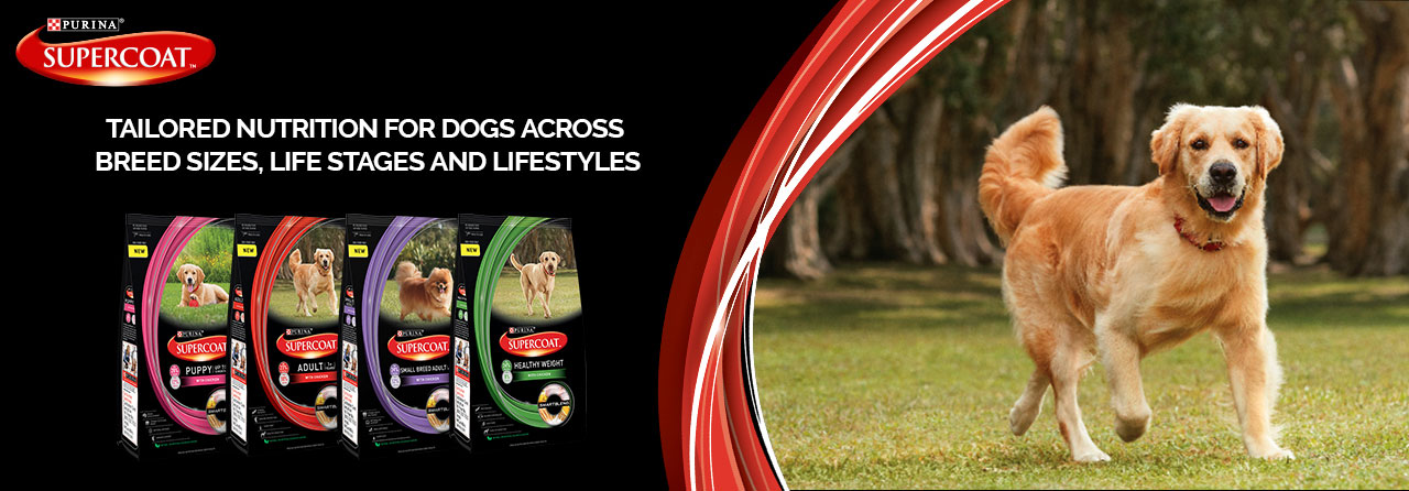 Purina Supercoat - Best Dog & Puppy Food In India