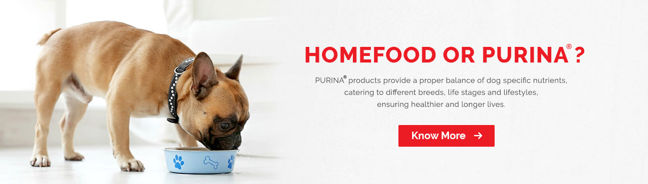 Purina Products for Pet Care